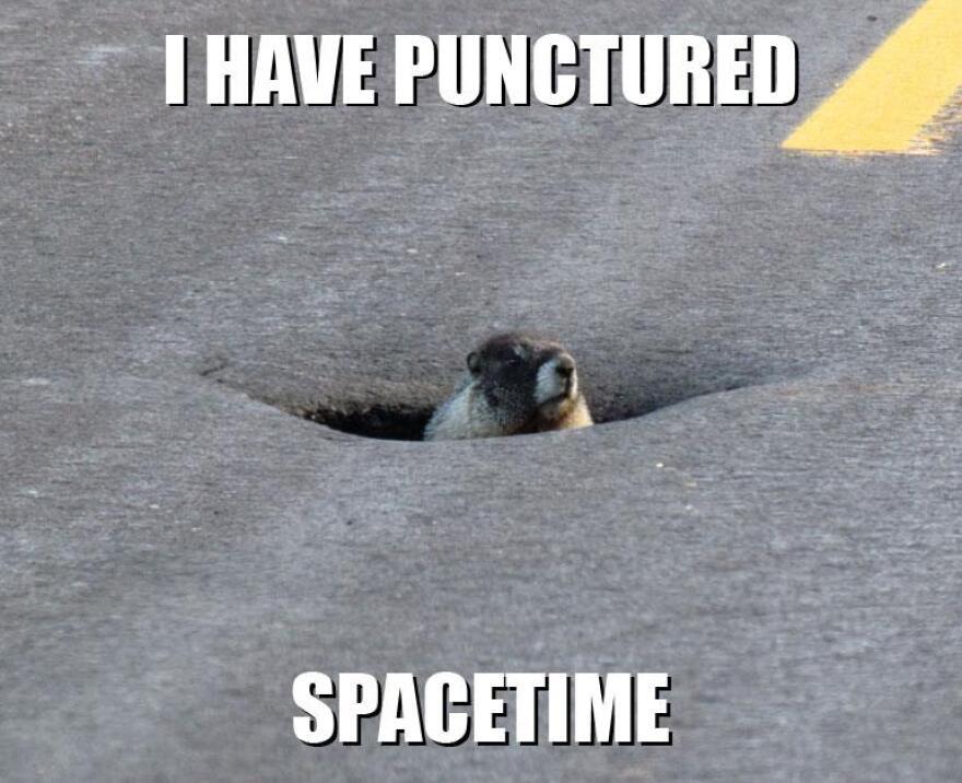 fb-marmot_spacetime-dsimons_09062012..jpg