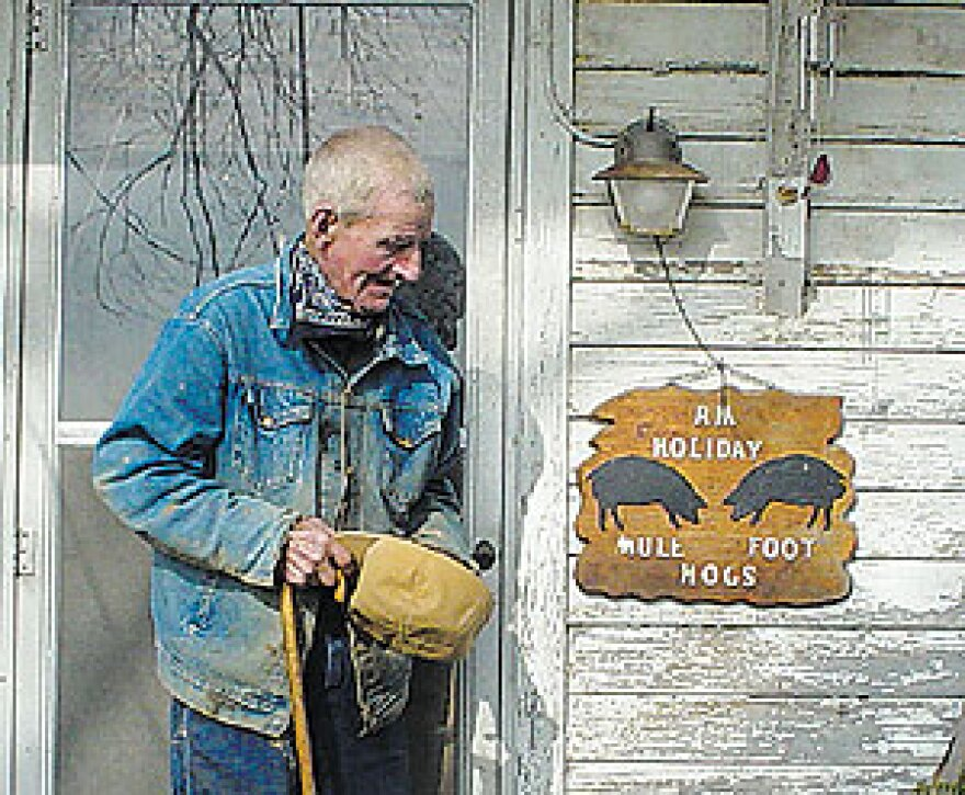 R.M. Holliday is credited with saving the American mulefoot hog from extinction in the 1960s, when he gathered the remaining individuals on his farm in Louisiana, Missouri.