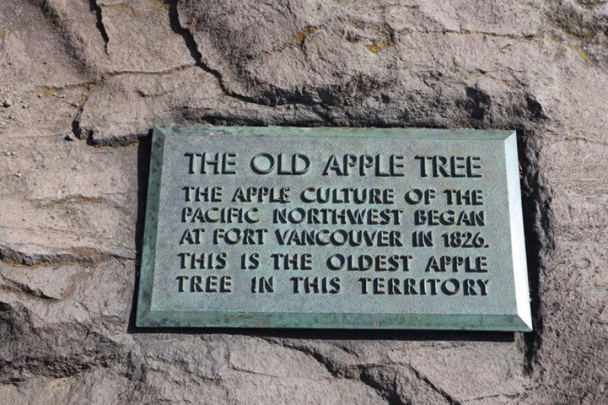 apple tree plaque.jpg