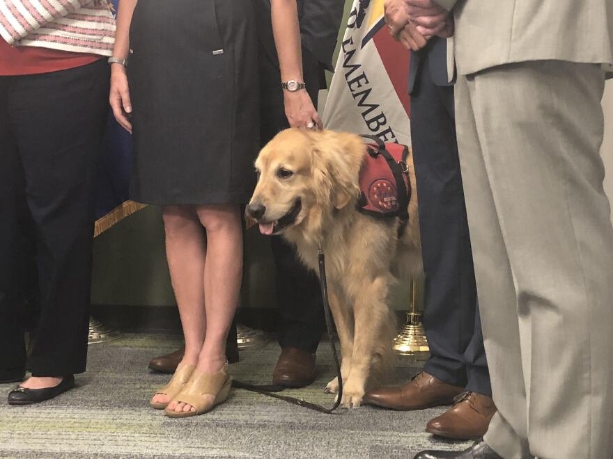 U.S. Veteran Brian Anderson's service dog, Hero, poses at the bill signing at the University of South Florida.