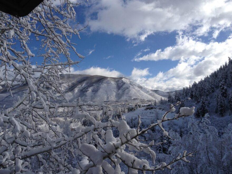 Elise_Thatcher_snow.jpg
