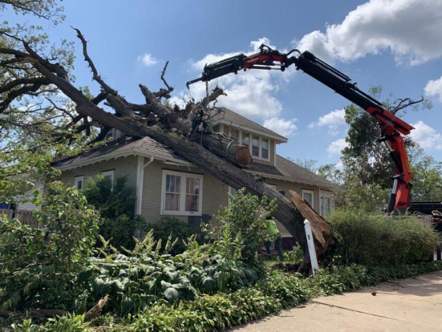 Crane-removing-tree-in-Cedar-Rapids-771x578.jpg