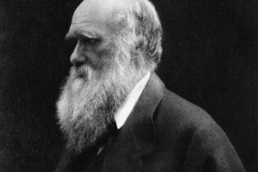 The Evolution Of Evolution: How Modern Science Has Built On Darwin's Original Theory