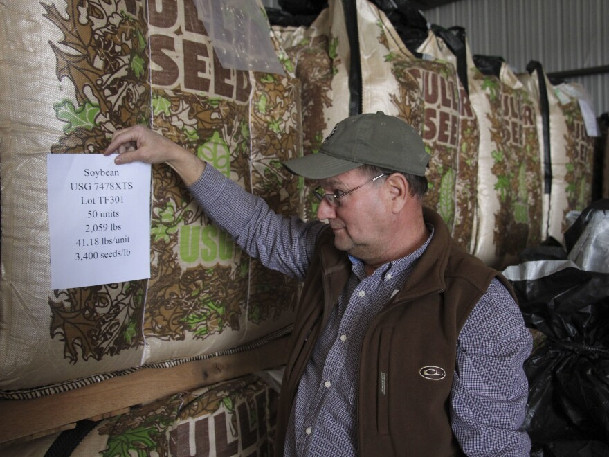 Terry Fuller has bulk bags of soybean seed in his storage shed at Fuller Seed and Supply, in Poplar Grove, Ark. Some varieties of soybeans have been modified to be unaffected by dicamba.