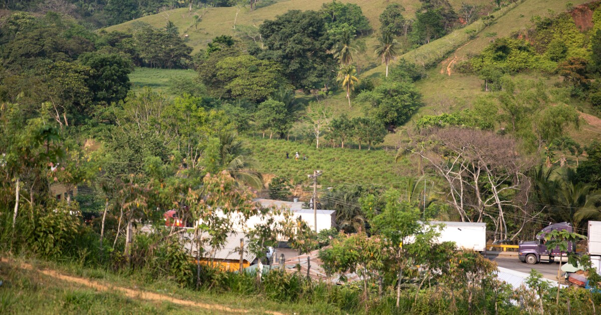 Why People Are Fleeing Honduras For The U.S.: 'All That's Left Here Is Misery'