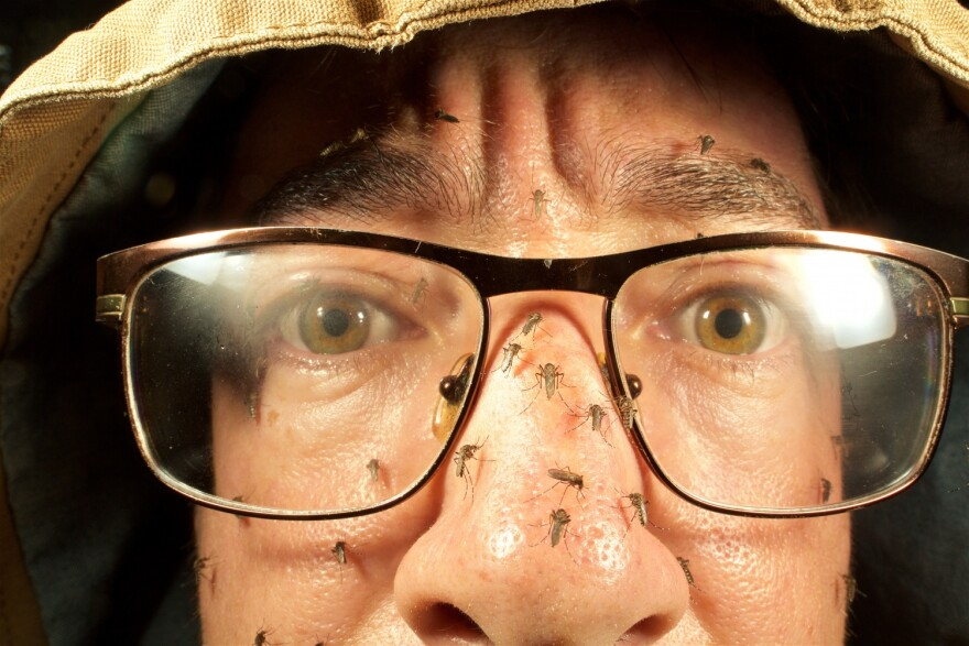 Lawrence Reeves' face covered with mosquitoes