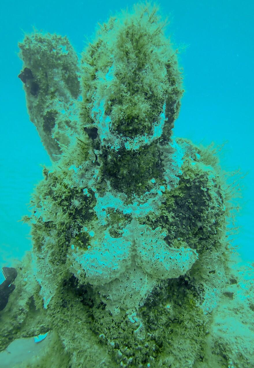 Underwater sculpture garden