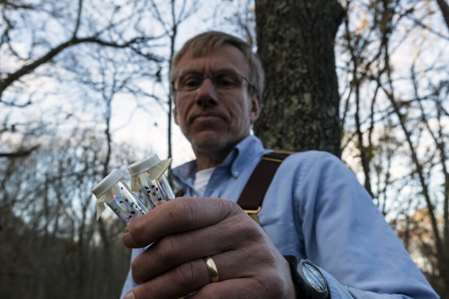 """Last year, Tom Mather caught 15,000 deer ticks in the woods of southern Rhode Island. """"People really need to become tick literate,"""" the University of Rhode Island researcher says."""