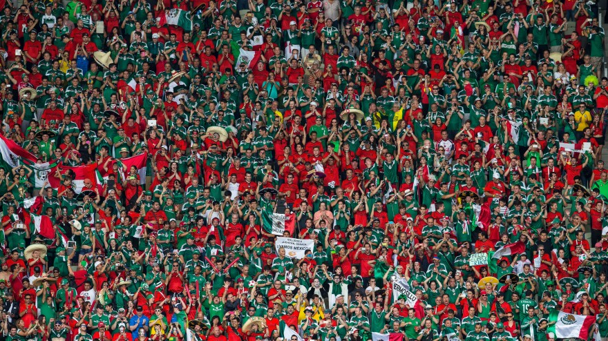 Mexico fans cheer during the 2014 FIFA World Cup Group A match between Brazil and Mexico on June 17.