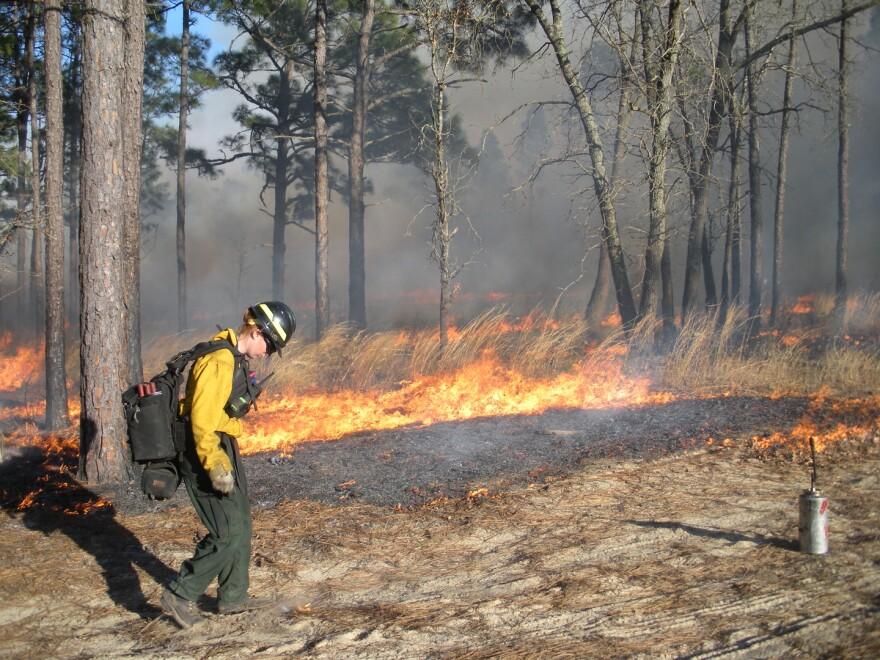 woman_firefighter_training_exchange.jpg