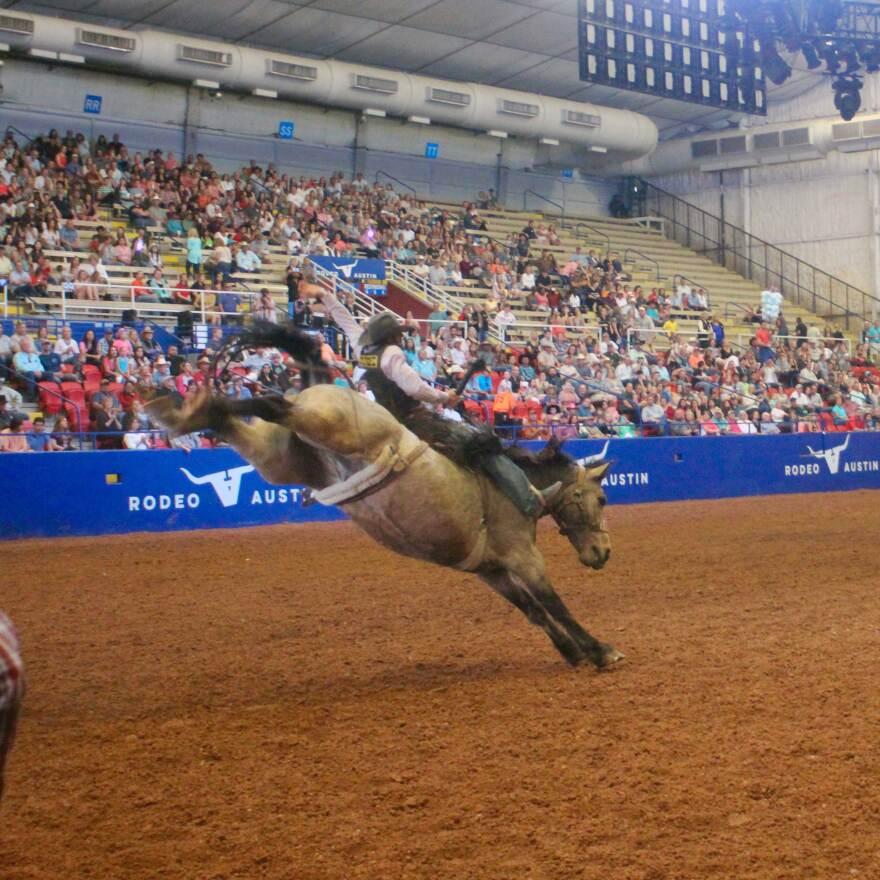 maas-rodeo-trevor.jpg