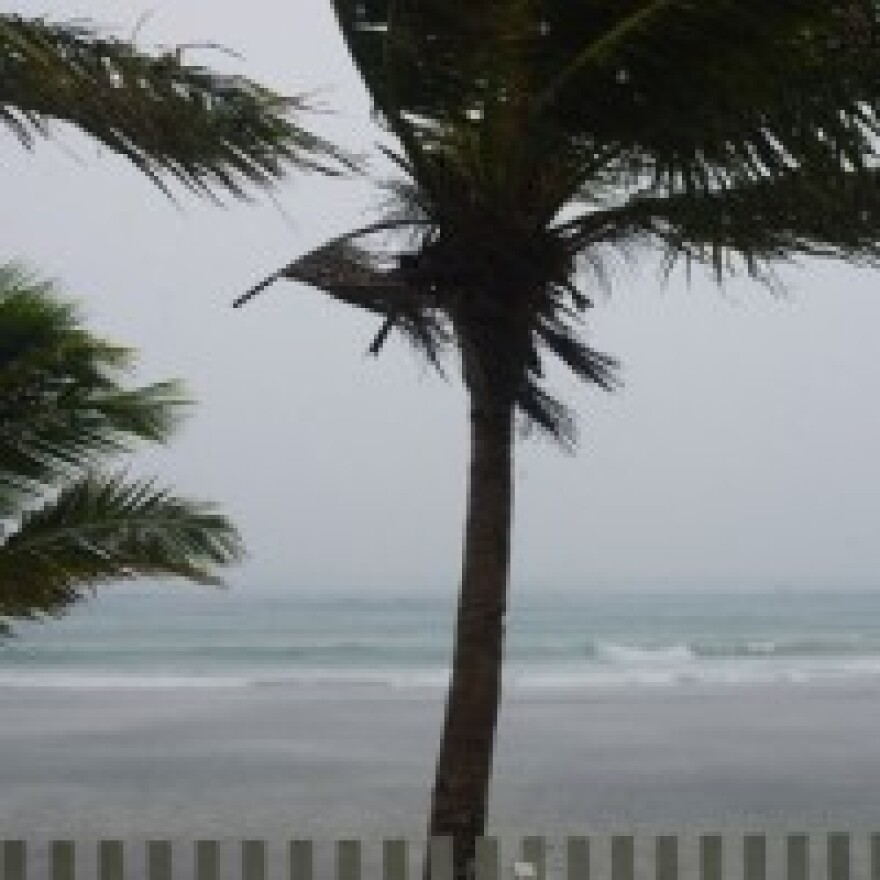 Tropical Storm Colin makes landfall on the Florida coast.