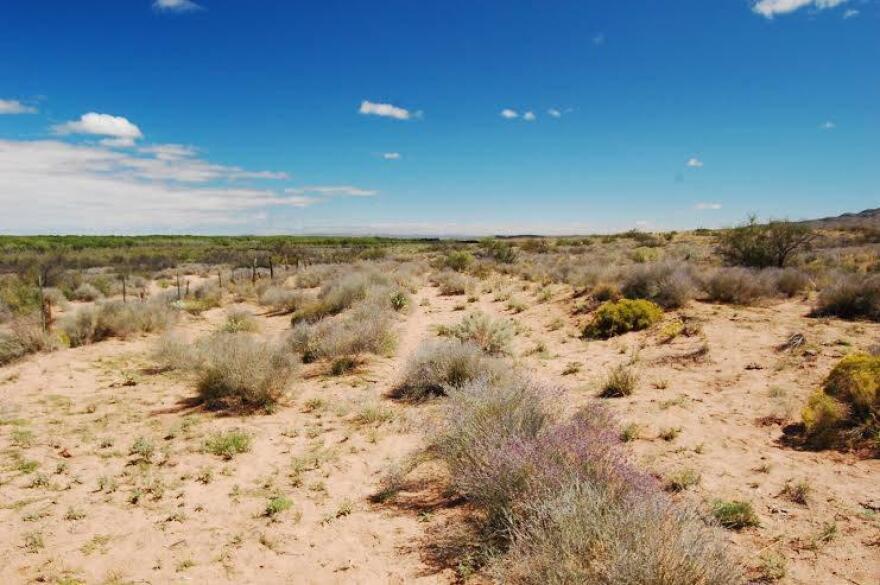 El Camino Real de Tierra Adentro.