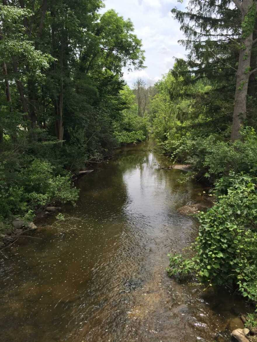 Chagrin River near the Rookery