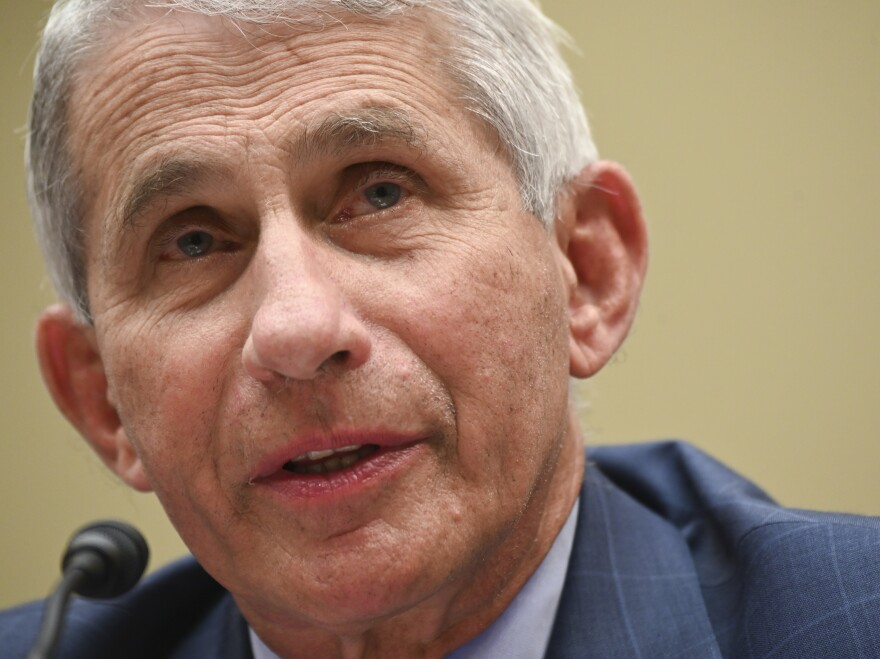 Dr. Anthony Fauci testifies last week in a House subcommittee hearing on the coronavirus. In an online forum Wednesday hosted by Harvard University, he shared that he has received death threats.