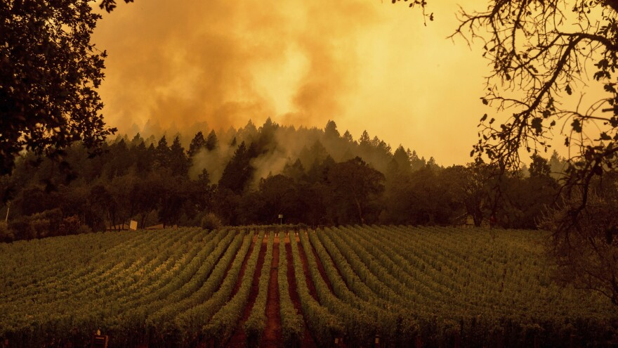 Smoke rises over a vineyard as the Glass Fire burns this week in Calistoga, Calif.