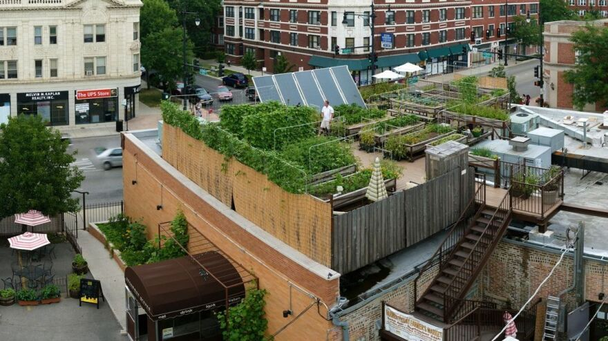 "Uncommon Ground, a <a href=""http://www.uncommonground.com/pages/organic_roof_top_farm_home/200.php"">certified green</a> restaurant in Chicago, hosts an organic farm on its rooftop."