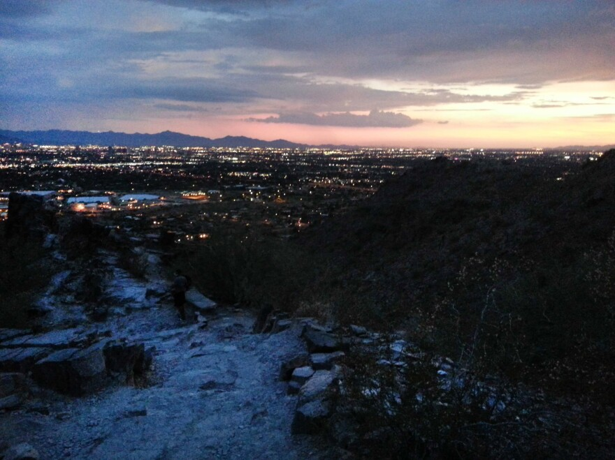 From this vantage point, about halfway up Piestewa Peak, the city of Phoenix unfolds.