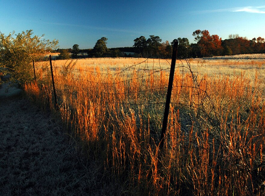 A wire fence in front of a farm field in fall.