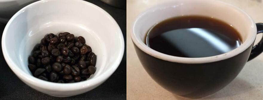 Much ado about nothing? Left: civet poop coffee beans. Right: a cup of java brewed from the stuff.