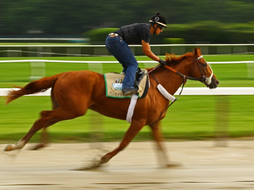 Triple Crown hopefull I'll Have Another is ridden by exercise rider Jonny Garcia during a morning workout at Belmont Park in Elmont, N.Y.