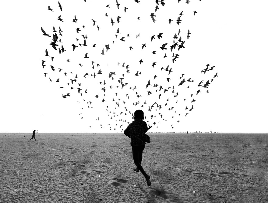 "Taken in Tamil Nadu, India, the picture is part of a series that the photographer titled: ""We Run, You Fly."""