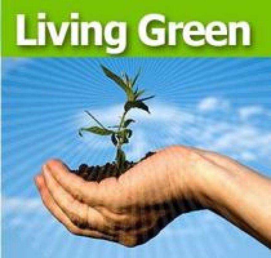 green-livingsm.jpg