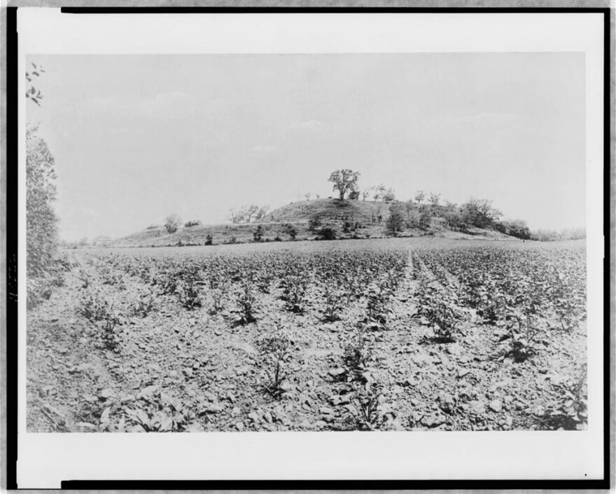 A photo of Monks Mound from 1907.