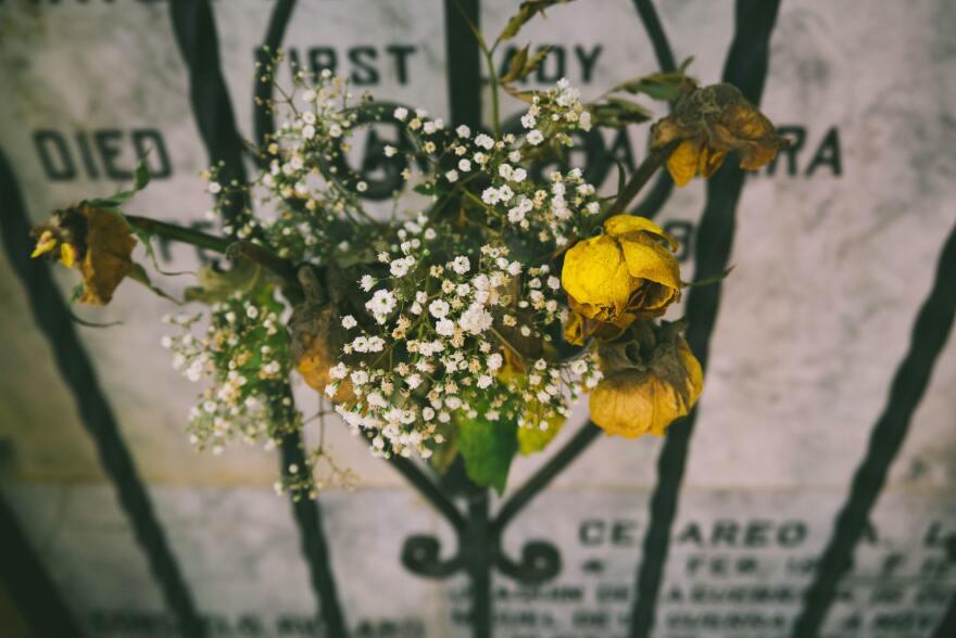 Yellow rose on black metal frame.