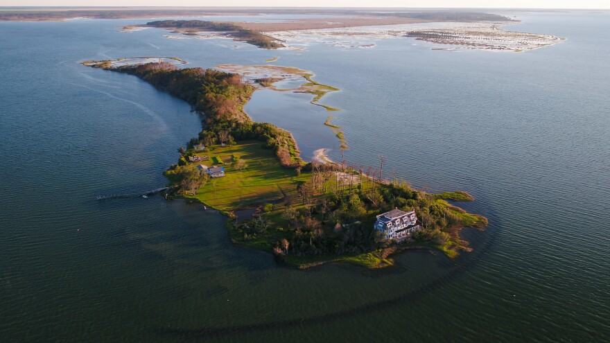 davis-island-overview.jpg