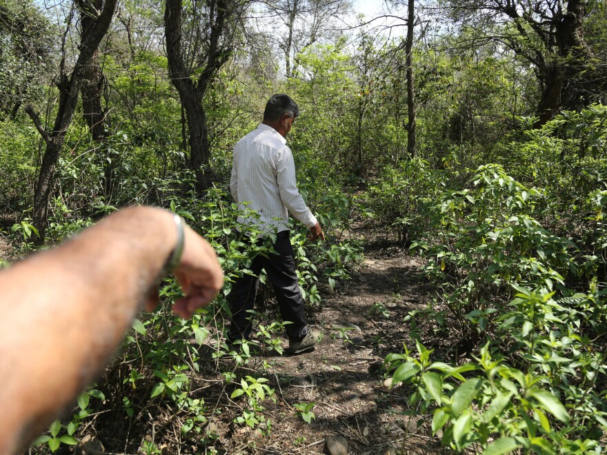 Men walk near the site where the body of an 8-year-old girl who was raped and murdered was found in January.
