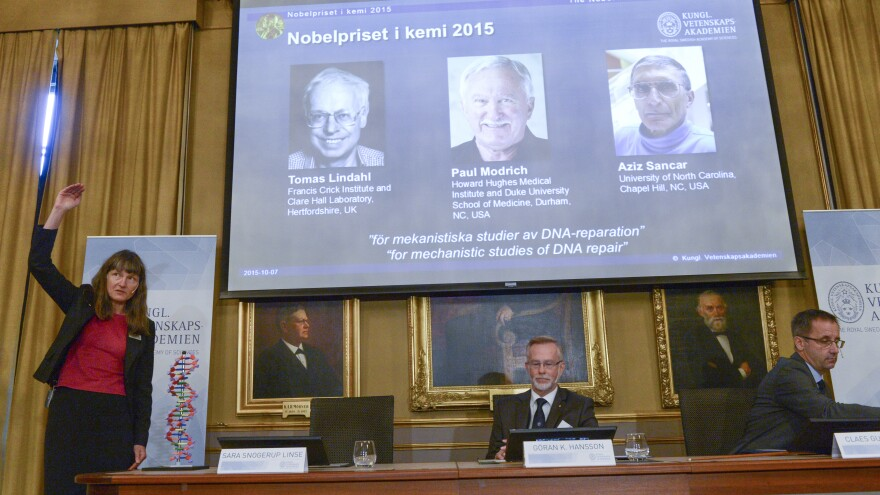 """Professor Sara Snogerup Linse (left) explains the work that won the 2015 Nobel Prize in Chemistry, won by Sweden's Tomas Lindahl, American Paul Modrich and U.S.-Turkish scientist Aziz Sancar on Wednesday. The three worked on """"mechanistic studies of DNA repair."""""""