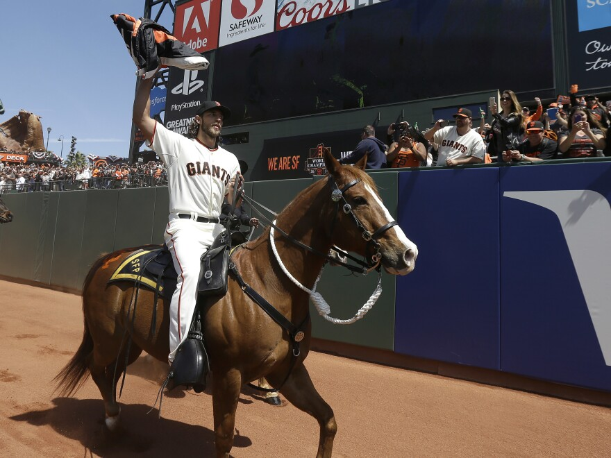 Major league pitcher Madison Bumgarner carries the 2014 San Francisco Giants championship pennant while riding a police horse before a game in 2015. <em>The Athletic</em> reports that Bumgarner has been competing at rodeos under an alias.