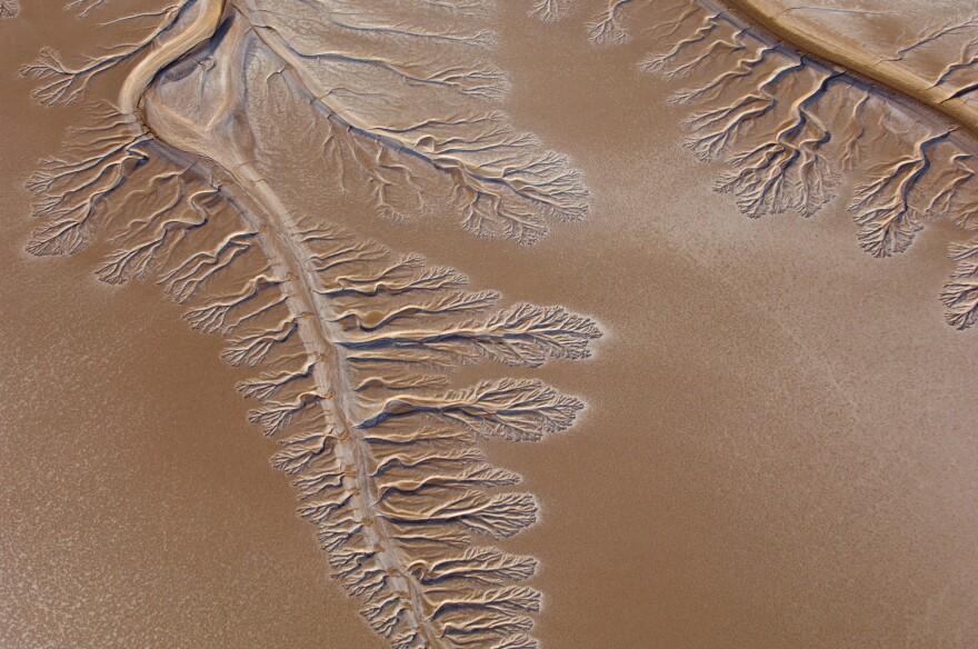 Colorado_River_Dry_Delta.jpg