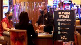 Hard Rock Casino Tampa Florida Jobs