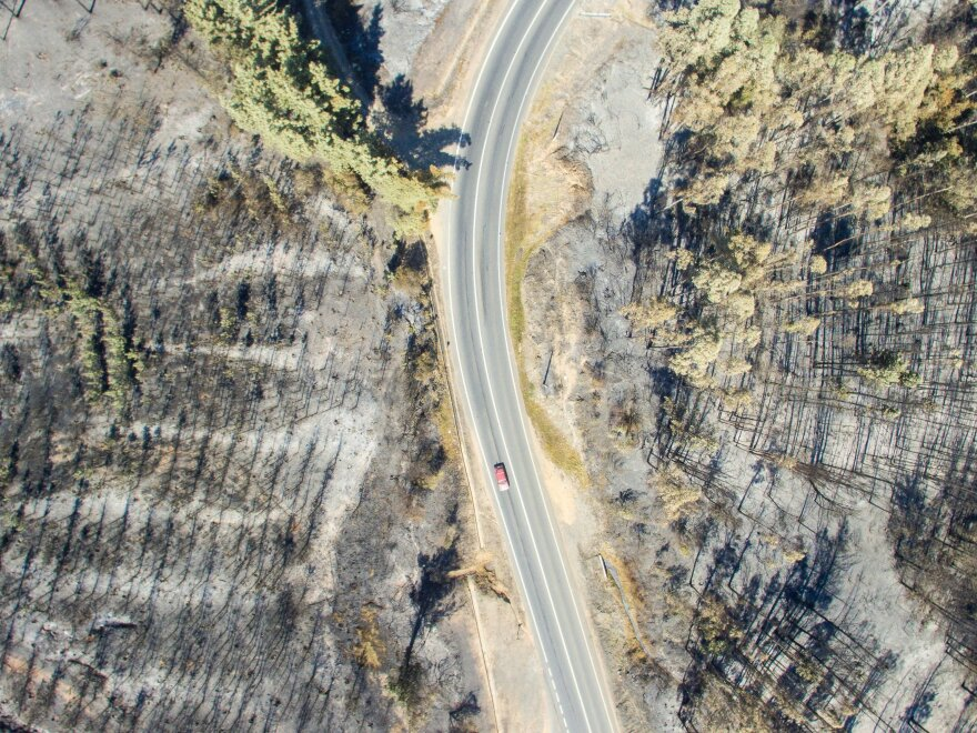 A drone image of a forest near La Florida, Chile, on Sunday, after a wildfire.