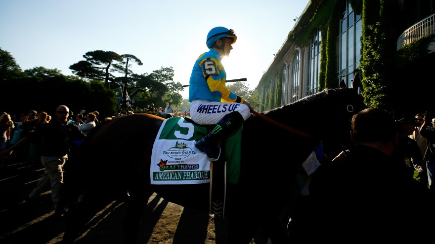 American Pharoah #5, ridden by Victor Espinoza, comes out of the paddock during the 147th running of the Belmont Stakes at Belmont Park on Saturday in Elmont, N.Y.