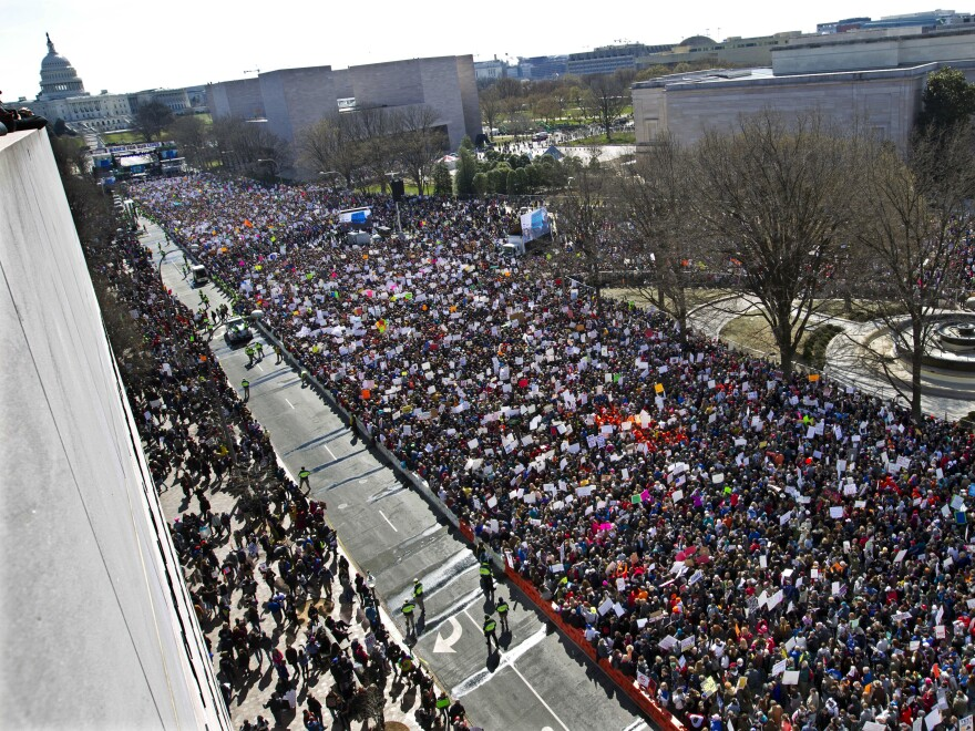 In this March 2018 photo, protesters fill Pennsylvania Avenue during the March for Our Lives rally in support of gun control. The student-led demonstration was one of the motivations for a new Fairfax Schools policy giving students one day off per year for protests.