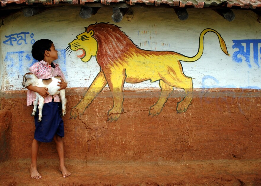 A little boy and his goat have an encounter with a painted lion in West Bengal, India.