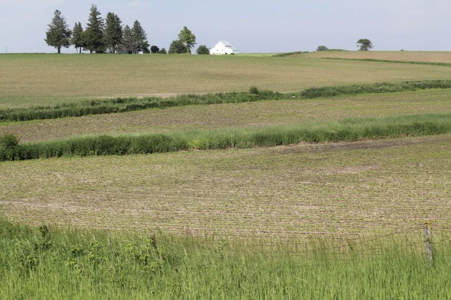 Iowa-farmscape-am-file.JPG