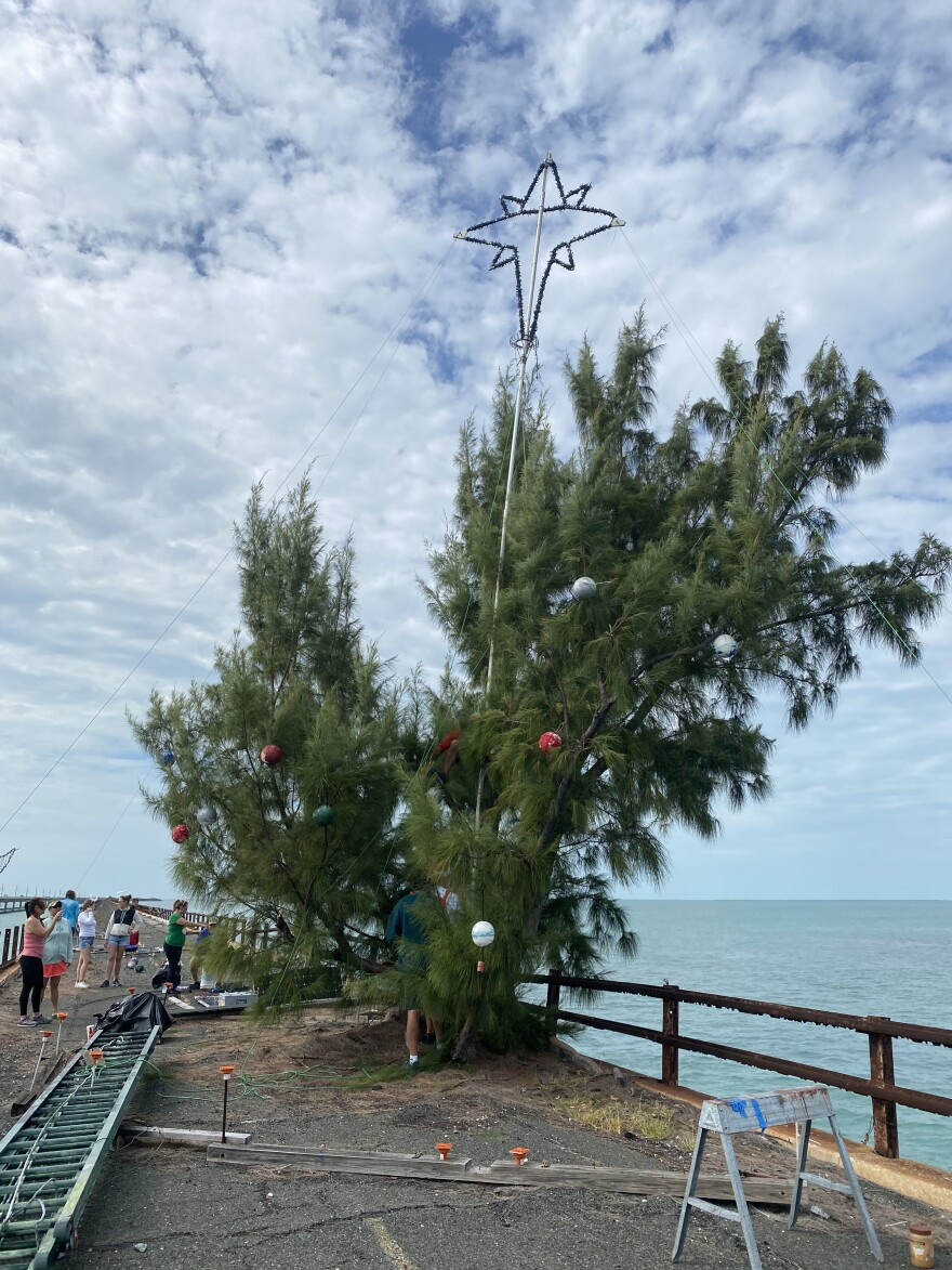 """Every year, a crew of anonymous """"elves"""" decorate the Australian pine known as Fred the Tree on a section of the old Seven Mile Bridge."""