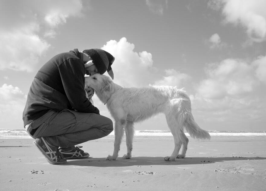 UB_Human-Pet_Interaction_9-4-17m.jpg