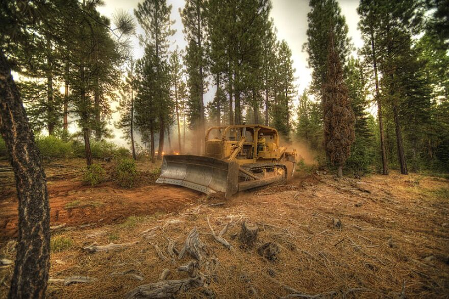 A photo of a bulldozer plowing a fire break in a forest. Flames and smoke are visible in the background.