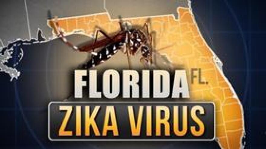 ZikaVirusMGN0812.jpg