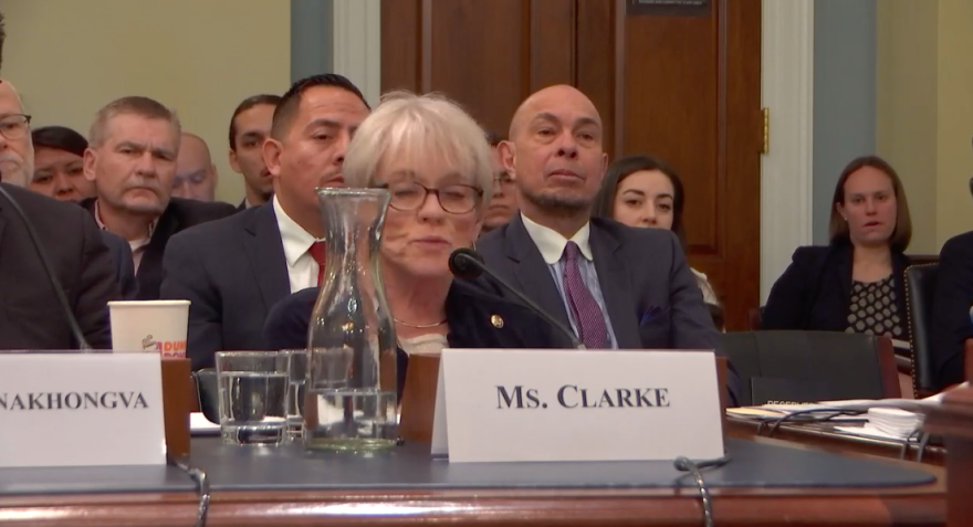 Photo of U.S. House Natural Resources Committee hearing 3/13/19.