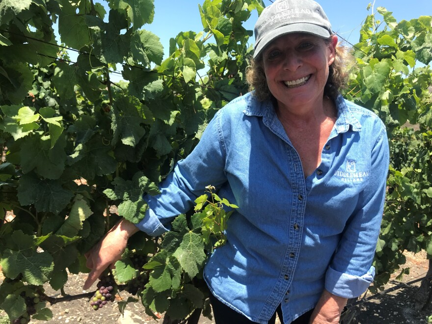 Vintner Kathy Joseph has learned that the fungicide she has been spraying on her grapes for decades could be drifting onto the cannabis, forcing her to use a more expensive and far less effective spray on the grapevines that are nearest to the cannabis farm.