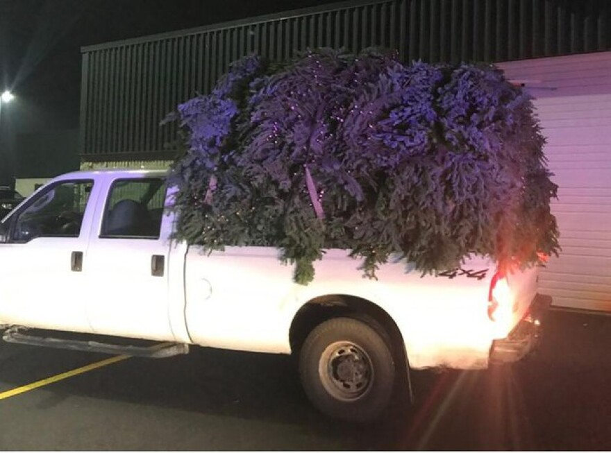<p>The Marion County Sheriff's office says 3,800 lbs of fir boughs were taken from the Willamette National Forest without a permit, for commercial holiday decorations.</p>