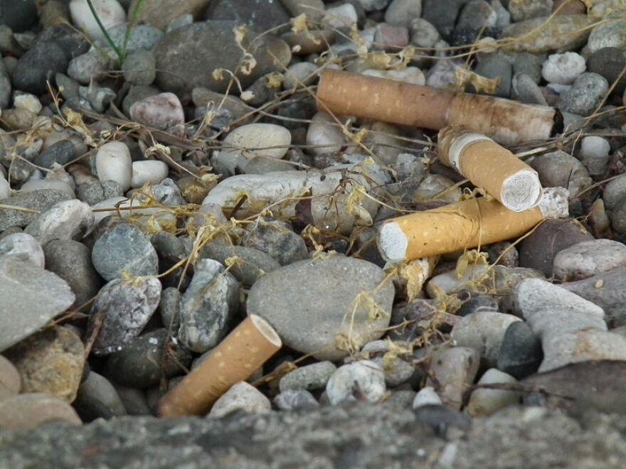 Cigarette butts in gravel