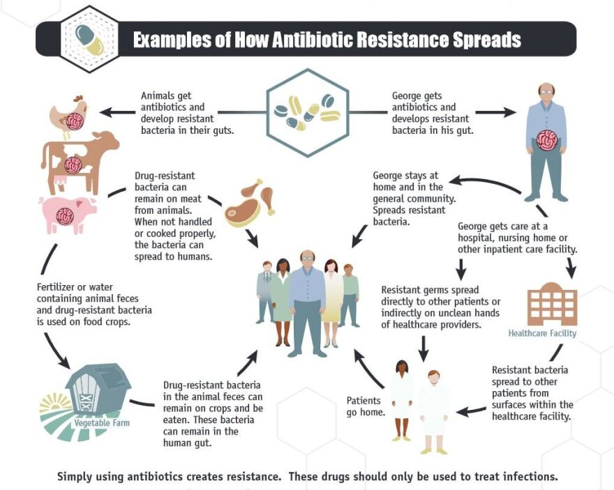 This diagram describes how antibiotic resistance spreads. It is from p. 14 of the U.S. Centers for Disease Control and Prevention report Antibiotic Resistance Threats in the United States, 2013.