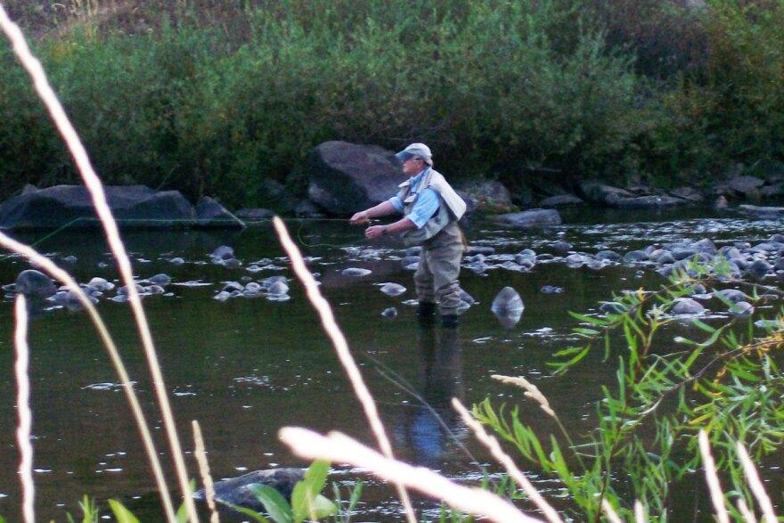 yampa_fisher_fcc-ghamilton-06252012.jpg